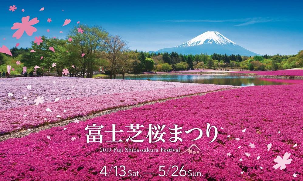 2019年富士芝桜まつり