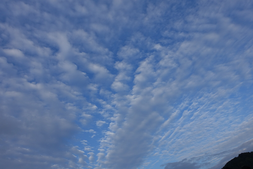 富士山世界遺産ヨガで見上げる青空