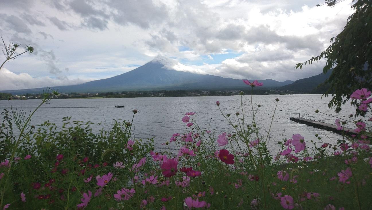 河口湖湖畔から望む富士山