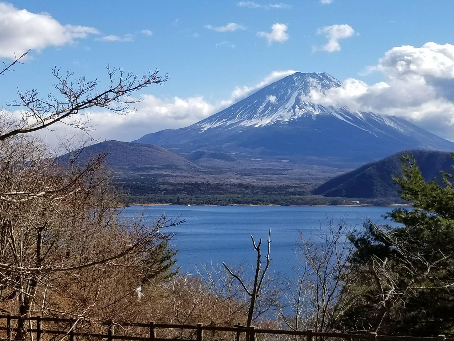 本栖湖「湖畔の春」の富士山