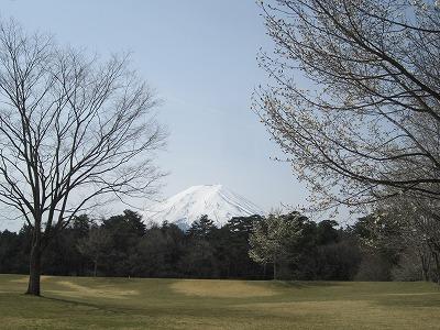 みなさんこんにちは。  写真は工場付近のパインズパークという公園で撮ったものです。   富士山にはまだ雪が残っていますが、寒さも和らぎ、道端に筑紫が咲いているのを見かけ、春に近づいていくのを日に日に感じています。  工場では厚手のジャンバーを着ている人はあまり見かけなくなり、とても過ごしやすい気温になってきました。  季節の変わり目ということで風邪には十分注意していきたいものですね。